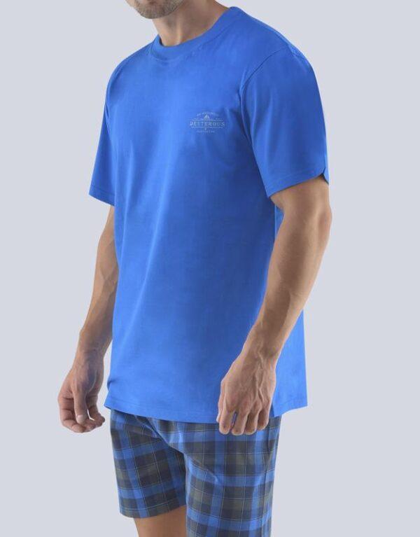 Pijama bumbac barbati 79072