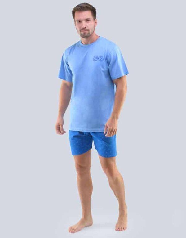 Pijama barbati 79094